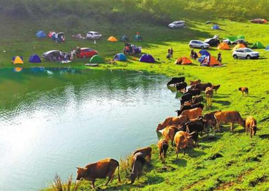 到户外拥抱自然!跨省游恢复半月人气旺 暑期游助推旅游业复苏