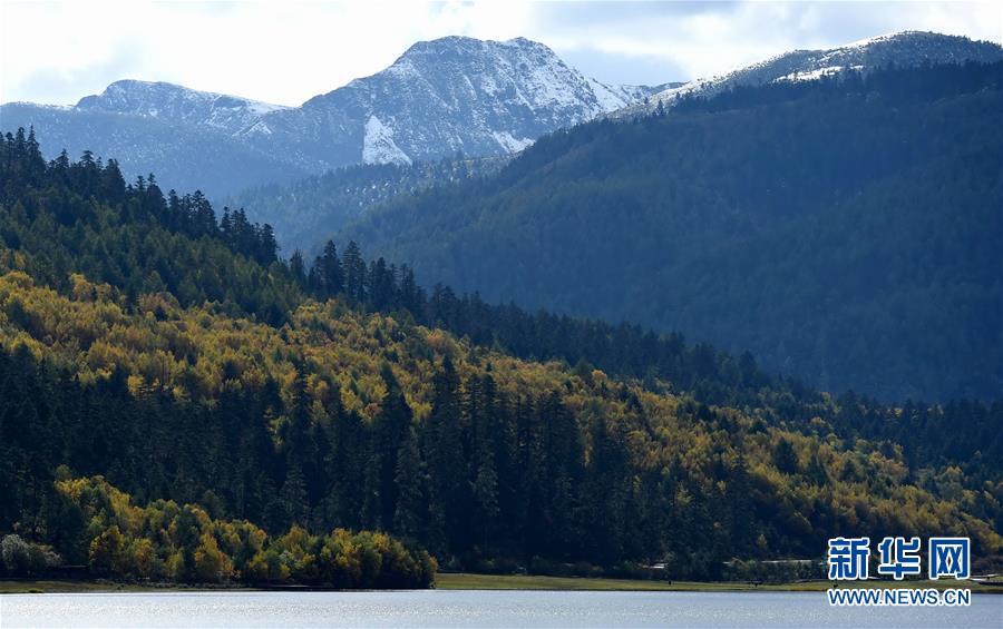 这是云南省迪庆藏族自治州香格里拉市境内的雪山,森林和湖泊一景