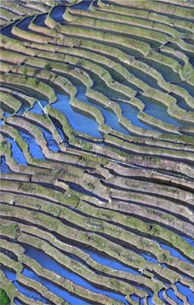 壮美的云南红河撒玛坝万亩梯田
