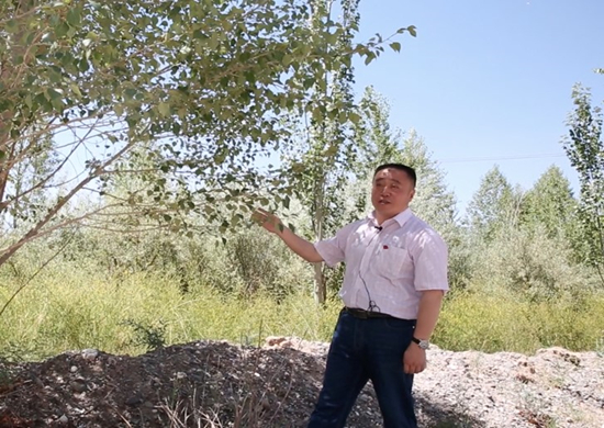 贾青松:22年坚守格尔木的造绿人