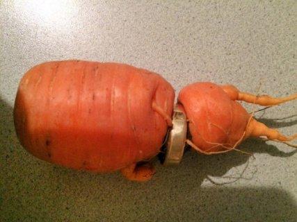 """老人干农活丢婚戒 三年后发现戒指""""长""""在萝卜上"""