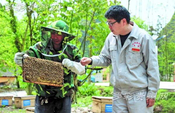 陈昌海与村民交流养蜂技术