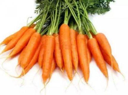 古寺郎胡萝卜:具有益肝明目增强免疫功能的功效