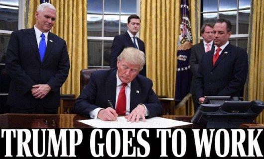 特朗普宣布就职 新官上任经济政治引担忧!