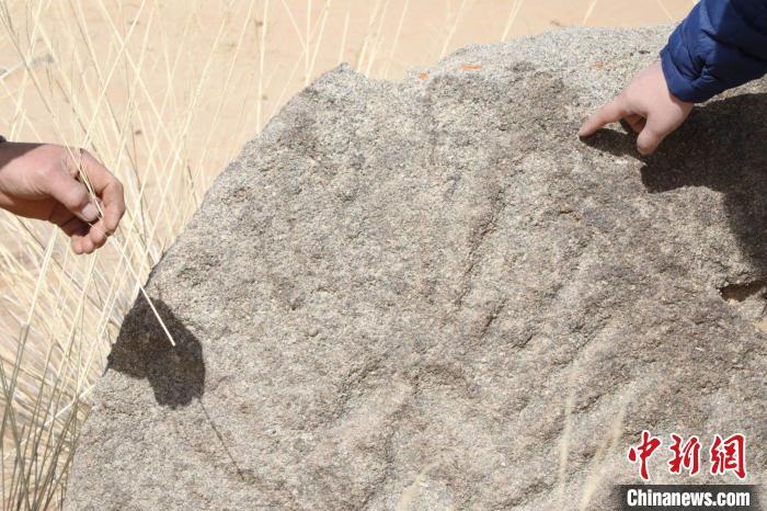 內(na)蒙古阿拉善再次發現11幅岩畫