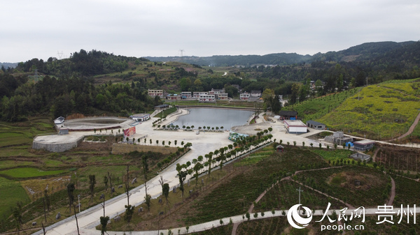 百(bai)泉湖村塘(tang)表組的空中景象(xiang)