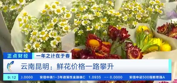 鲜花涨价近4倍 鲜花需求大增 最贵的还是玫瑰